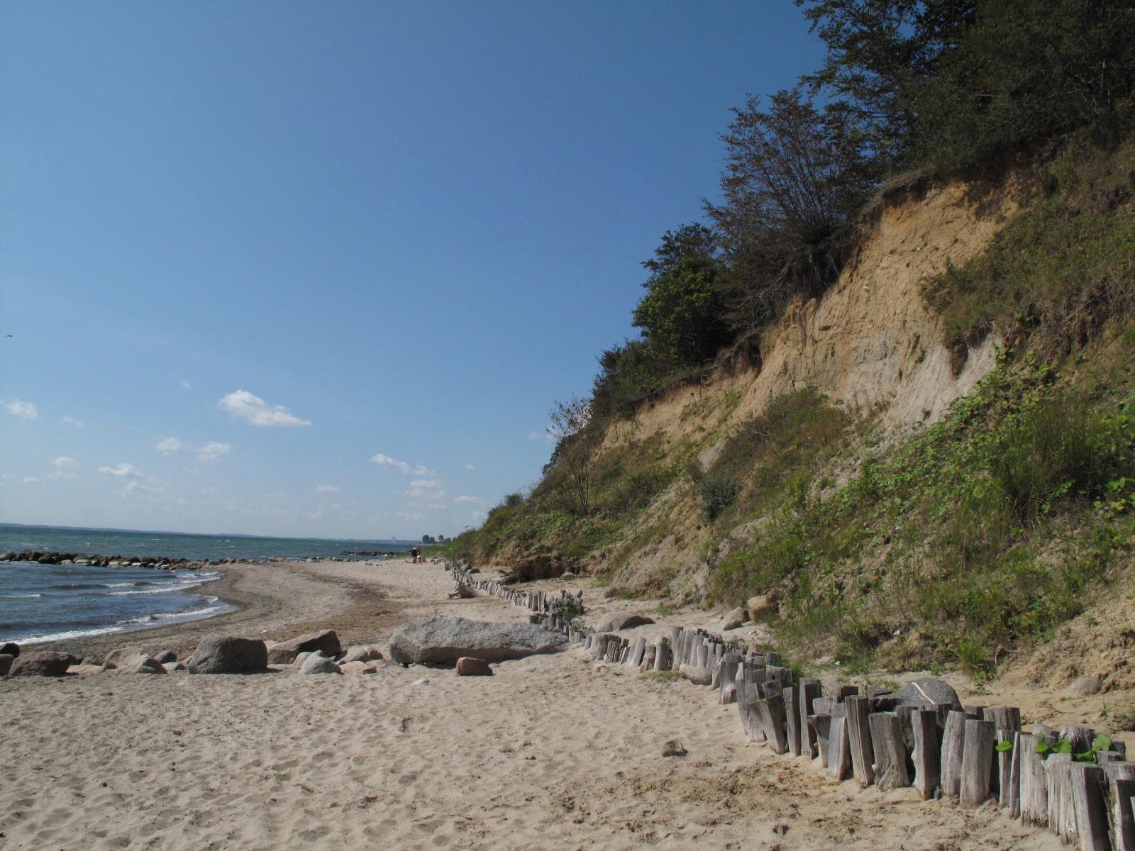Strand Brodauer Ruheforst